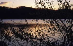 radnor_lake_sunrise_web.jpg